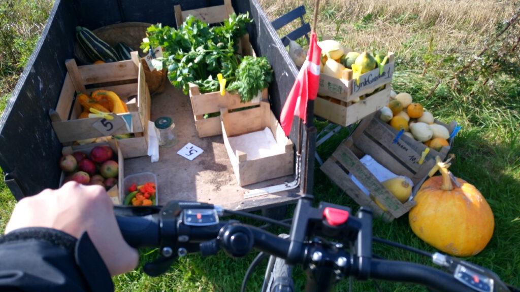 Essen von Farmen Bauern am Strassenrand am Berlin Kopenhagen Radweg