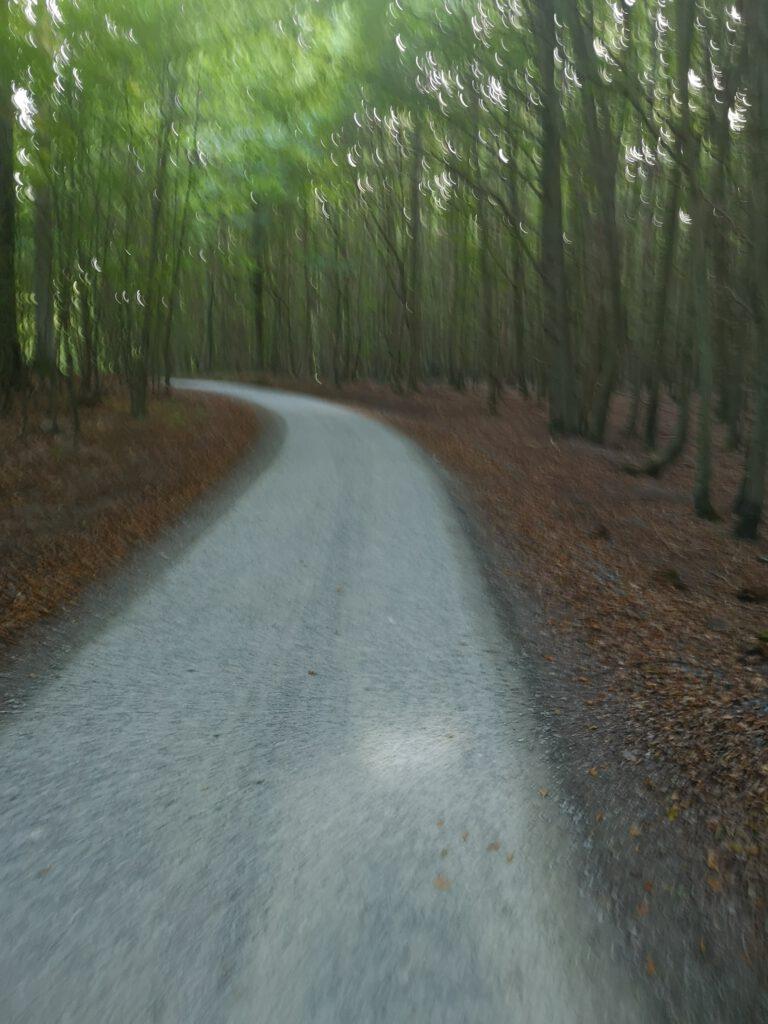 Radweg Nationalpark Jasmund Fahrradtour