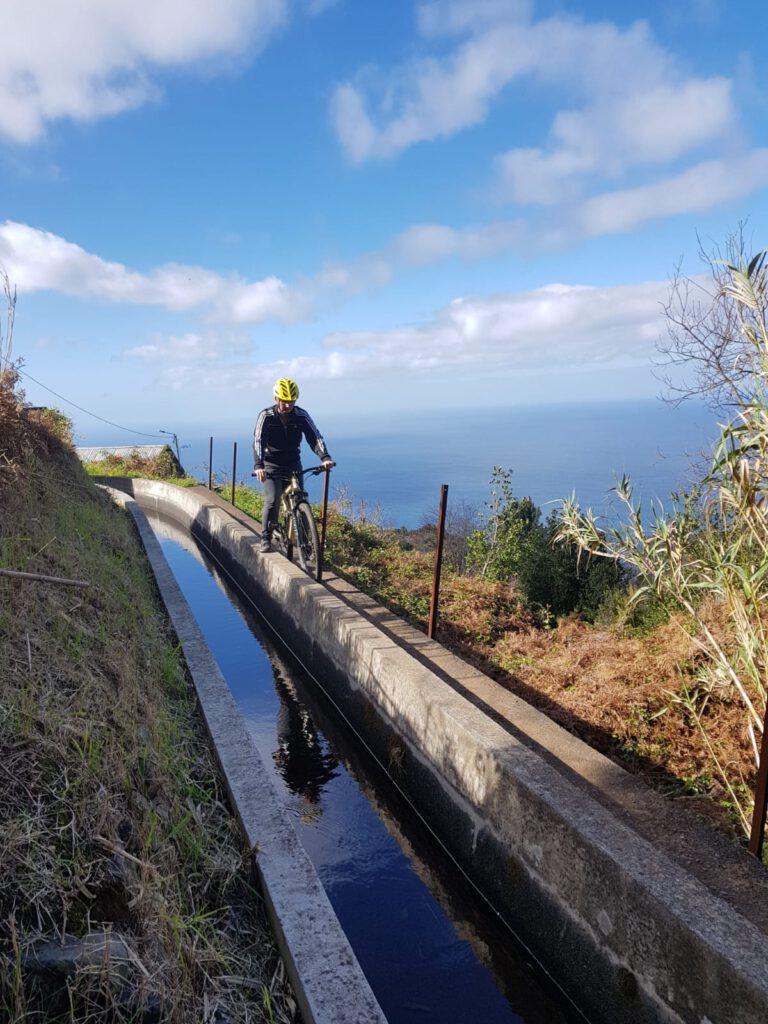 Fahrrad fahren auf Madeira am Levada Eukalyptus